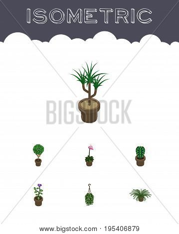 Isometric Flower Set Of Plant, Houseplant, Grower And Other Vector Objects. Also Includes Hanging, Fern, Blossom Elements.