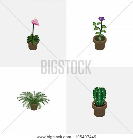 Isometric Houseplant Set Of Flower, Plant, Grower And Other Vector Objects. Also Includes Flower, Plant, Fern Elements.