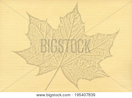 Notepaper document background with a cut out isolated maple leaf watermark