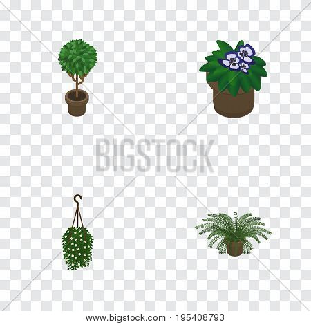 Isometric Houseplant Set Of Plant, Tree, Flowerpot And Other Vector Objects. Also Includes Fern, Flowerpot, Plant Elements.