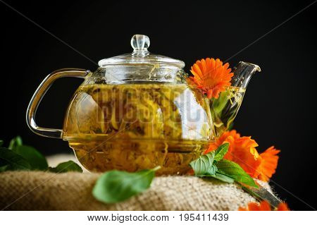 Therapeutic Tea From Flowers Of Calendula
