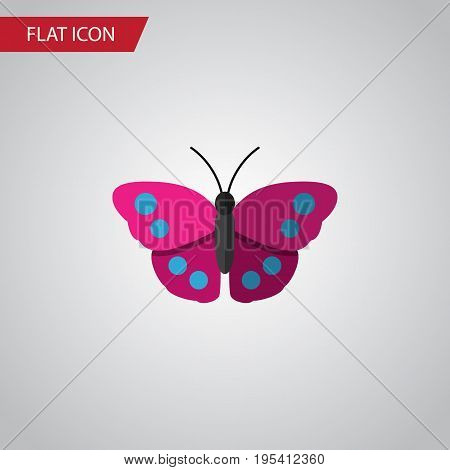 Isolated Violet Wing Flat Icon. Archippus Vector Element Can Be Used For Archippus, Butterfly, Monarch Design Concept.