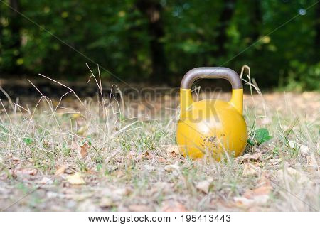 Kettle bell. Single Kettle bell in the grass in the forest