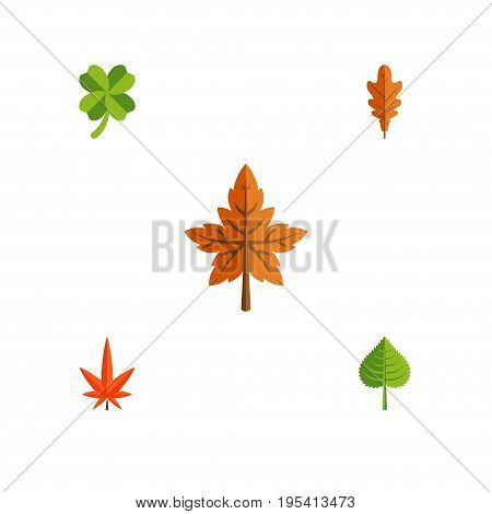 Flat Icon Leaves Set Of Alder, Aspen, Linden And Other Vector Objects. Also Includes Aspen, Frond, Leaf Elements.