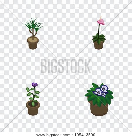 Isometric Flower Set Of Flowerpot, Grower, Flower And Other Vector Objects. Also Includes Plant, Botany, Pot Elements.