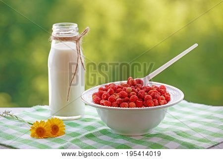 Bucket of wild strawberries, a bottle of milk and yellow daisies. A plate filled with berries of red on a green blurred background. Colorful summer pattern in red, yellow and green tones.