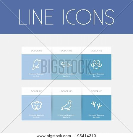 Set Of 6 Editable Animal Icons. Includes Symbols Such As Cougar, Lynx, Dog Steps And More. Can Be Used For Web, Mobile, UI And Infographic Design.