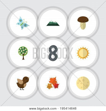 Flat Icon Nature Set Of Peak, Monarch, Canadian And Other Vector Objects. Also Includes Canadian, Sky, Moth Elements.
