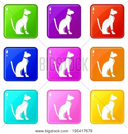 Egyptian cat icons of 9 color set isolated vector illustration