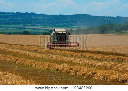 Harvest . Combine working on the large wheat field