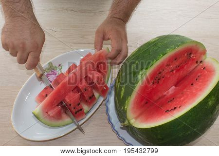 Close-up man hand cutting watermelon. He sliced fresh organic watermelon. Male with watermelon and a knife in hand