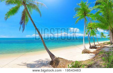 Bang Po beach, Koh Samui, Thailand