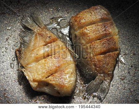 oily fried fish not good for calories control