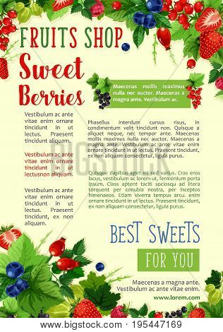 Berries poster for farm fruit shop. Vector berry fruits harvest of red and black currant or gooseberry and raspberry, garden strawberry or forest cherry and cranberry or blueberry and blackberry