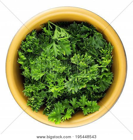 Top view of fresh parsley leaves in bowl on white background