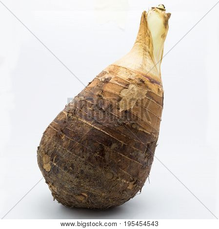 Fresh Taro on white background Root Taro nutition food