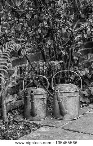 Two Old Watering Cans In Vintage Style Image Of English Contry Garden In Black And White