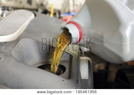 Car mechanic pouring new oil to engine .