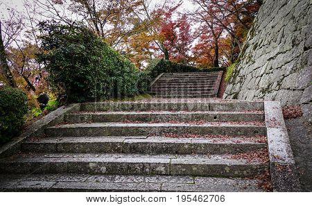 Concrete Stair With Stone Wall At Temple