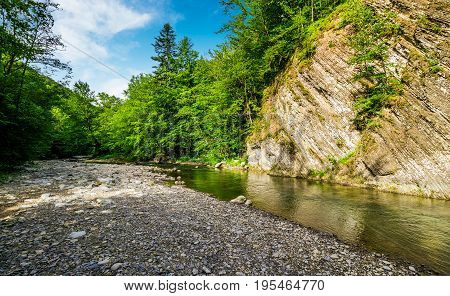 Calm Forest River Under Rocky Cliff