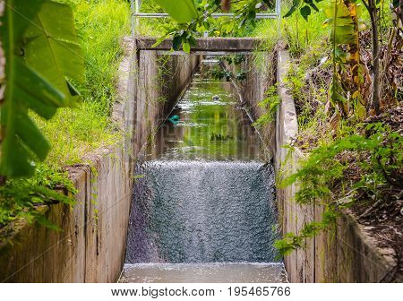 image of sewage water drainage with slow water flow day time.