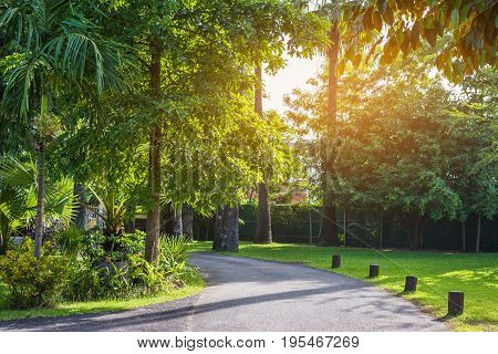 Walkway With Sunny Day In Park.