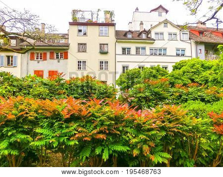 Zurich cityscape with flowers in the foreground at Switzerland