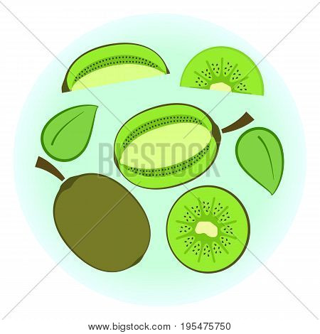 Flat Vector Ripe Green Kiwi Set - Isolated Split Fruit