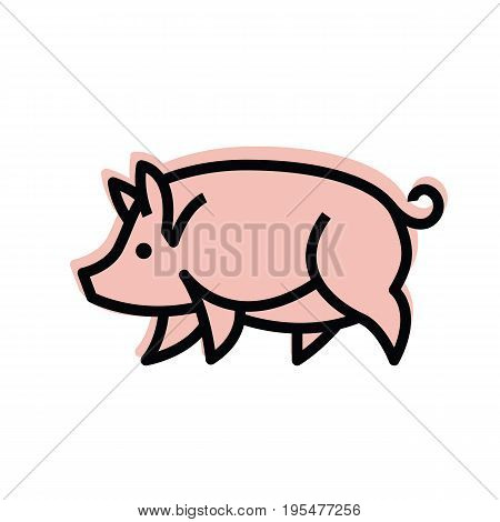 Colorful stylized drawing of pig swine - for icon or sign template