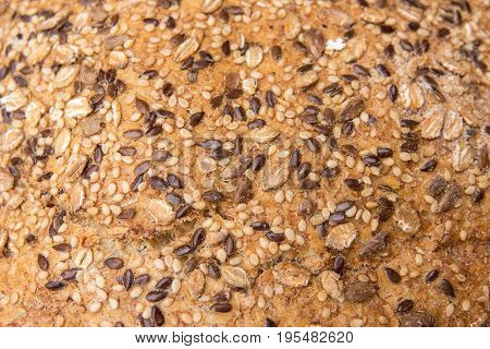 whole wheat bread, isolated texture detail of whole-grain seed. Different varieties of grains
