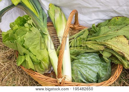 lettuce, leek and spinach. Wicker basket fresh vegetables Ingredients to prepare vegetarian meal Uncooked vegetarian food Raw green vegetables in a basket. Food background