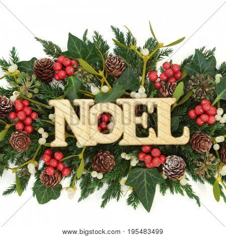 Gold noel sign decoration with holly, ivy, mistletoe, fir and pine cones on white background.