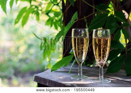 Two Glasses Of White Sparkling Wine On The Background Of The Summer Garden. Copy Space.
