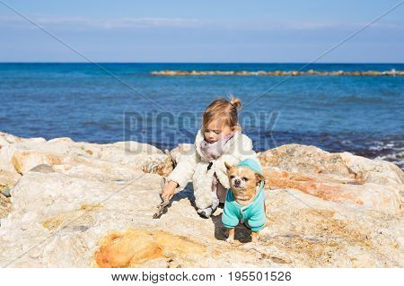 Child, pet, summer and vacation concept - Little girl with chihuahua dog on seashore.
