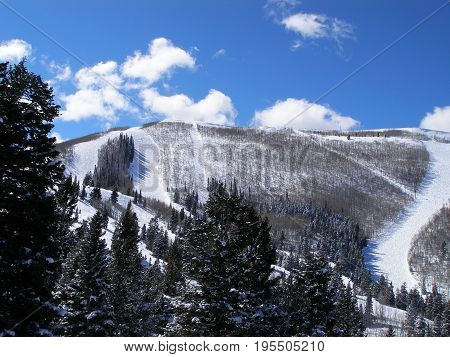 this is an image of ski trails on a mountain in Utah