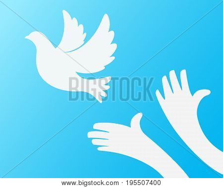 Close up of hand Freeing the white bird on sky blue background