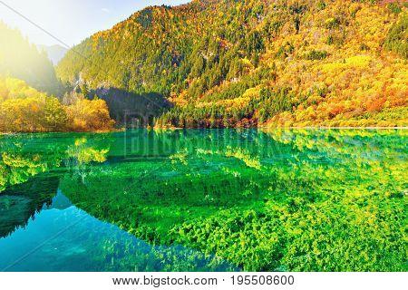 Aerial view of Five Flower Lake at autumn sunrise time. Jiuzhaigou nature reserve, Jiuzhai Valley National Park, China.