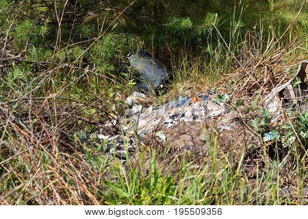 Garbage Dump In Forest. Environmental Issue, Pollution Of The Surrounding Nature.