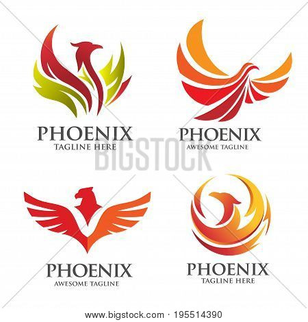 best phoenix logo concept, luxury phoenix consulting element logo icon concept,