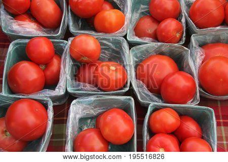 Tomato (Solanum lycopersicum) on sale farmers market