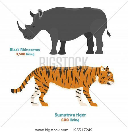 Tiger action wildlife animal danger rhinoceros mammal fur wild bengal wildcat character rino vector illustration. Safari striped carnivore aggressive anger orange jungle feline.