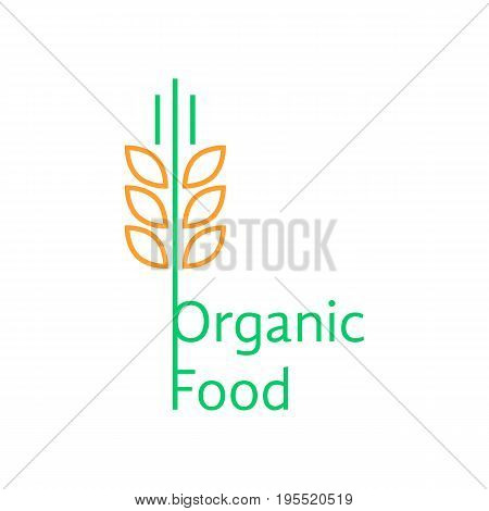 thin line wheat ears like organic food logo. concept of straw, hard wheat, pasta, visual identity, grow. isolated on white background. flat linear style trend modern brand design vector illustration