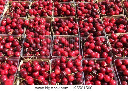 Cherries for sale at a farmers market in Traverse City, Michigan