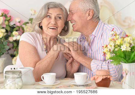 Portrait of happy senior couple drinking tea together