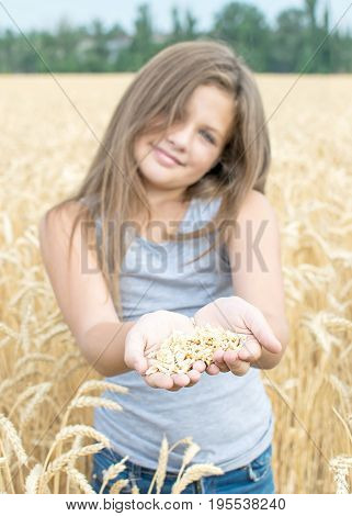 Child holding wheat grains in open palms in field