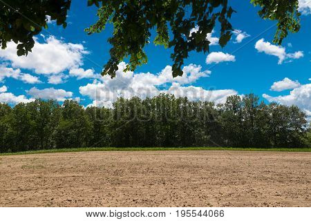 Field in a country side on Wisconsin