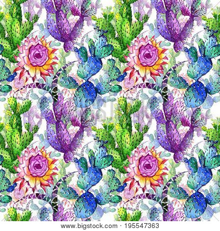 Wildflower cactus flower pattern in a watercolor style. Full name of the plant: cactus. Aquarelle wild flower for background, texture, wrapper pattern, frame or border.