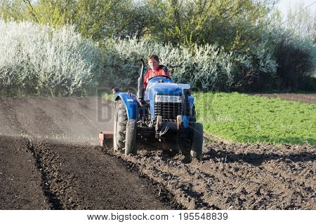 Tractor driver plows a garden on a blue tractor