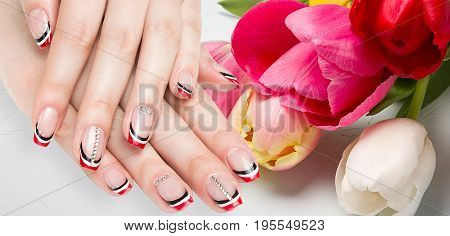 French manicure - beautiful manicured female hands with red black and white manicure with rhinestones isolated on flowers background, border design panoramic banner.
