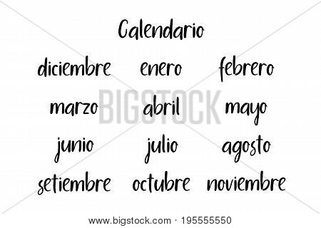 Handwritten Months. Spanish language. Modern Calligraphy. Isolated on White Background. Vector illustration for design calendar 2018, greeting card, planner, organizer, invitation.